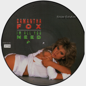 Sam Samantha Fox - I'm All You Need, 12 inch vinyl picture disc single side 1.
