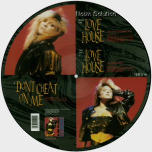 Sam Samantha Fox - Love House I Want Your Body, 12 inch vinyl picture disc single side 2.