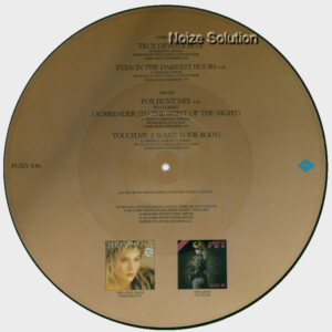 Sam Samantha Fox - True Devotion, 12 inch vinyl picture disc single side 2.