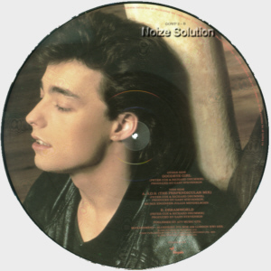 Go West � Goodbye Girl, 12 inch vinyl Picture Disc record Side 2.