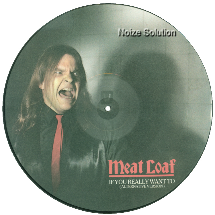 Meat Loaf If You Really Want To 12 inch vinyl Picture Disc Record Side 1 MeatLoaf.