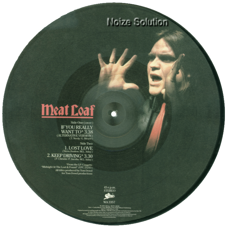 Meat Loaf If You Really Want To 12 inch vinyl Picture Disc Record Side 2 MeatLoaf.