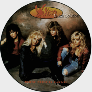 Vixen - How Much Love, 12 inch vinyl Picture Disc record side 1.