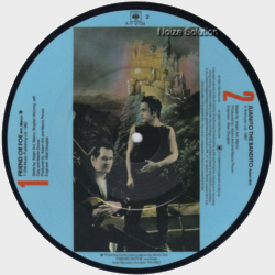 Adam (Ant) And The Ants - Friend Or Foe, 7 inch vinyl Picture Disc Record side 2.