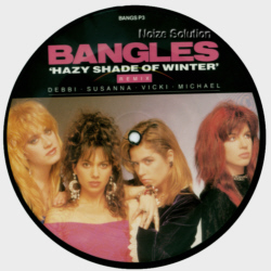 Bangles Hazy Shade Of Winter 7 inch vinyl Picture Disc Record Side 1.