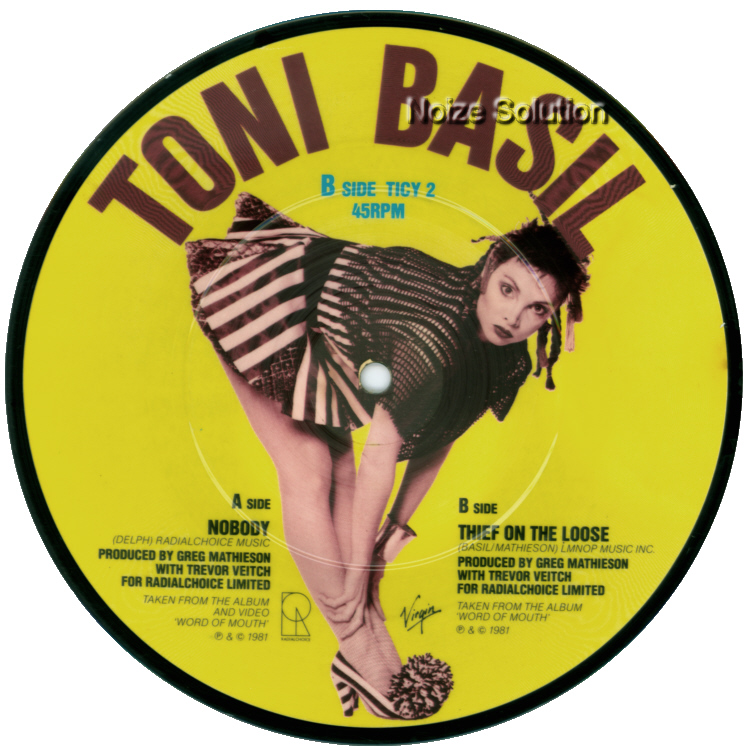 Toni Basil Nobody 7 inch vinyl Picture Disc Record Side 2 ToniBasil.