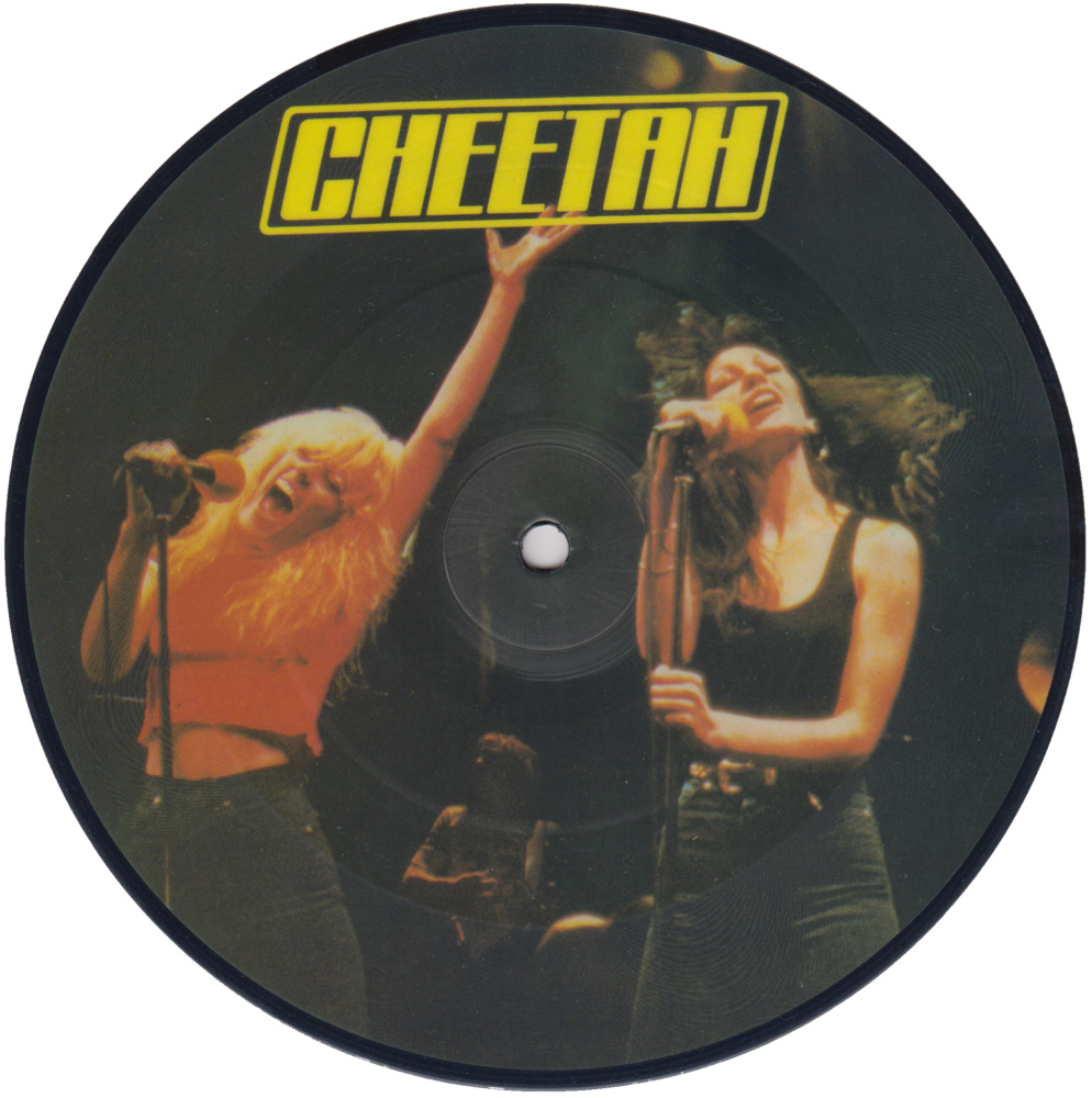 Cheetah - Spend The Night 7 inch vinyl Picture Disc Record Side 1 CheetahCheetah.