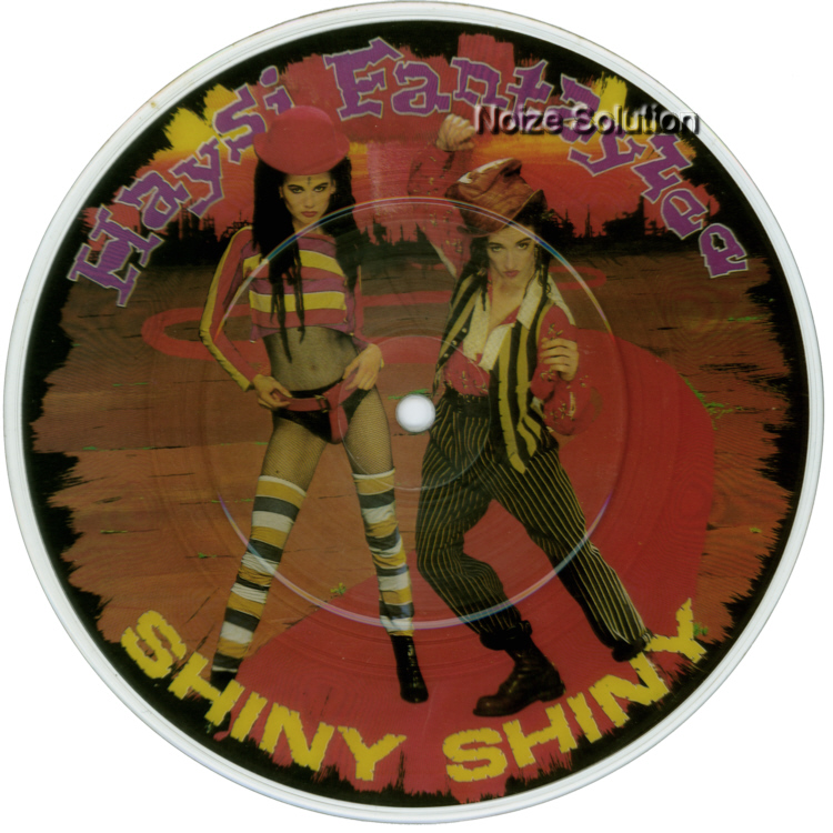 Haysi Fantayzee Shiny Shiny 7 inch vinyl Picture Disc Record Side 1.