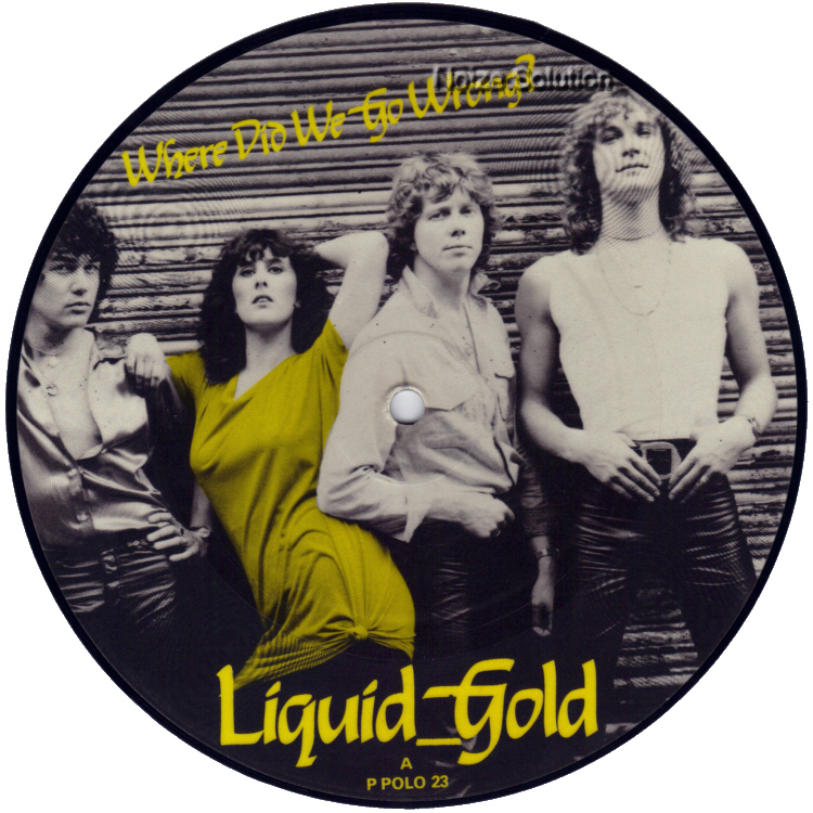Liquid Gold Where Did We Go Wrong 7 inch vinyl Picture Disc Record Side 1 LiquidGold.