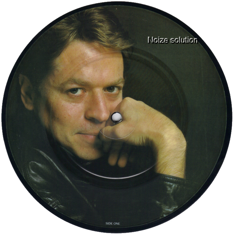 Robert Palmer - Some Guys have All The Luck 7 inch vinyl Picture Disc Record 1 Side 1.