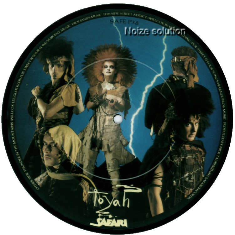 Toyah Thunder In The Mountains 7 inch vinyl Picture Disc Record Side 2.