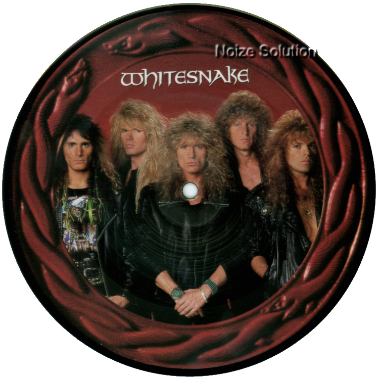 Whitesnake - The Deeper The Love 7 inch vinyl Picture Disc Record Side 1 WhitesnakeWhitesnake.