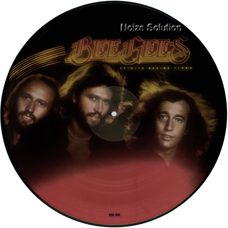 Bee Gees - Spirits having Flown, vinyl LP Picture Disc record side 1.