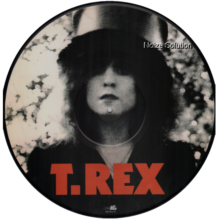 MARC BOLAN AND T.REX - The Slider, vinyl LP Picture Disc record side 1.