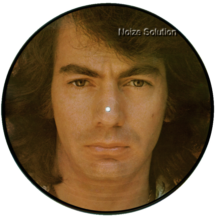 Neil Diamond - His 12 Greatest Hits vinyl LP Picture Disc Record Side 2 NeilDiamond.