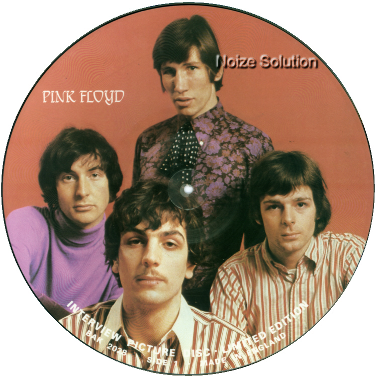 Pink Floyd - Interview vinyl LP Picture Disc Record Side 1 pinkfloyd.