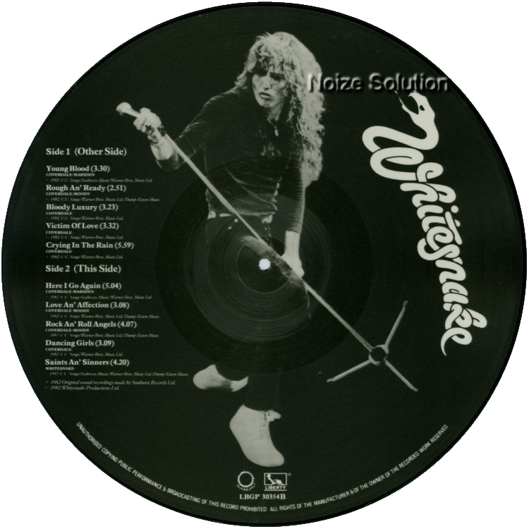 Whitesnake - Saints & Sinners vinyl LP Picture Disc Record Side 2 WhitesnakeWhitesnake.