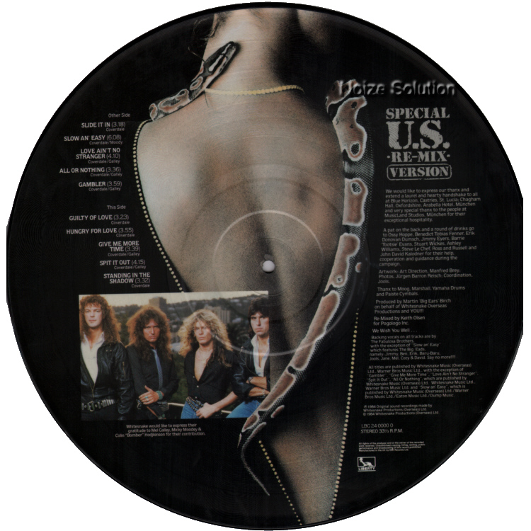 Whitesnake - Slide It In vinyl LP Picture Disc Record Side 2.