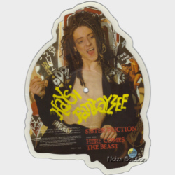 Haysi Fantayzee Sister Friction 7 inch vinyl Picture Disc Record Side 2.